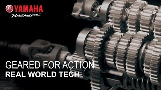 Real World Tech - Geared for Action