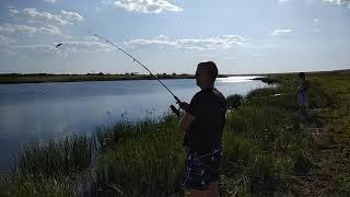 Спининг летом рыбалка на пруду