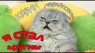 ПЛОХОЙ И ЗЛОЙ кот Кевин УХОДИТ навсегда | каким будет новый кот???