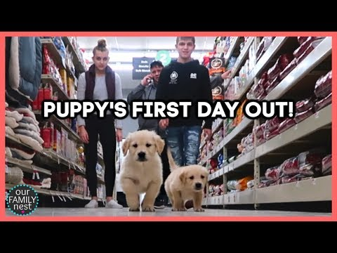 PUPPY'S FIRST DAY OUT SHOPPING TRIP!