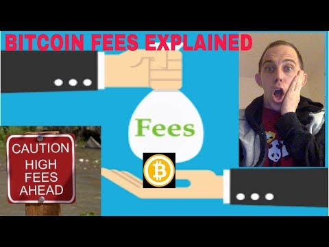 BITCOIN FEES TOO HIGH - WHAT YOU NEED TO  REALIZE AND DO