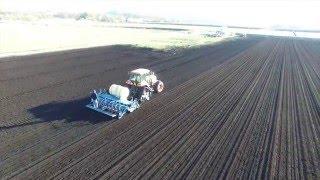 Onion planting Orange County NY
