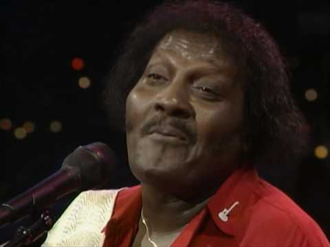 """Albert Collins - """"Lights Are On But Nobody's Home"""" [Live from Austin, TX] Mp3"""
