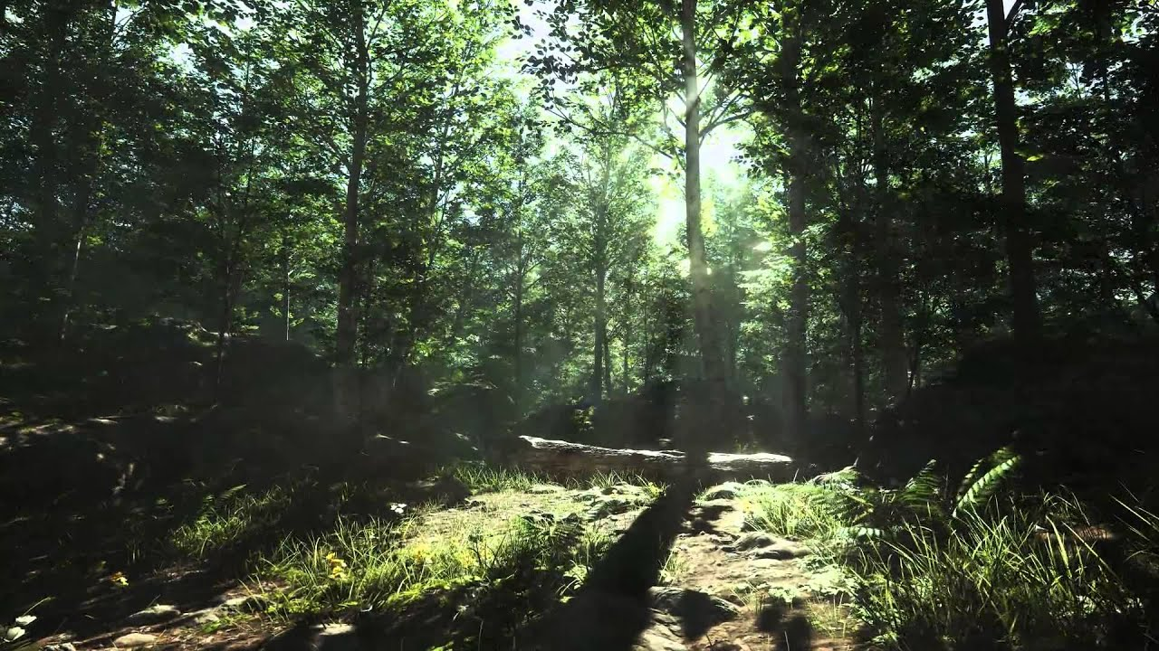 Unreal Engine 4, Forest Day Tech Demo