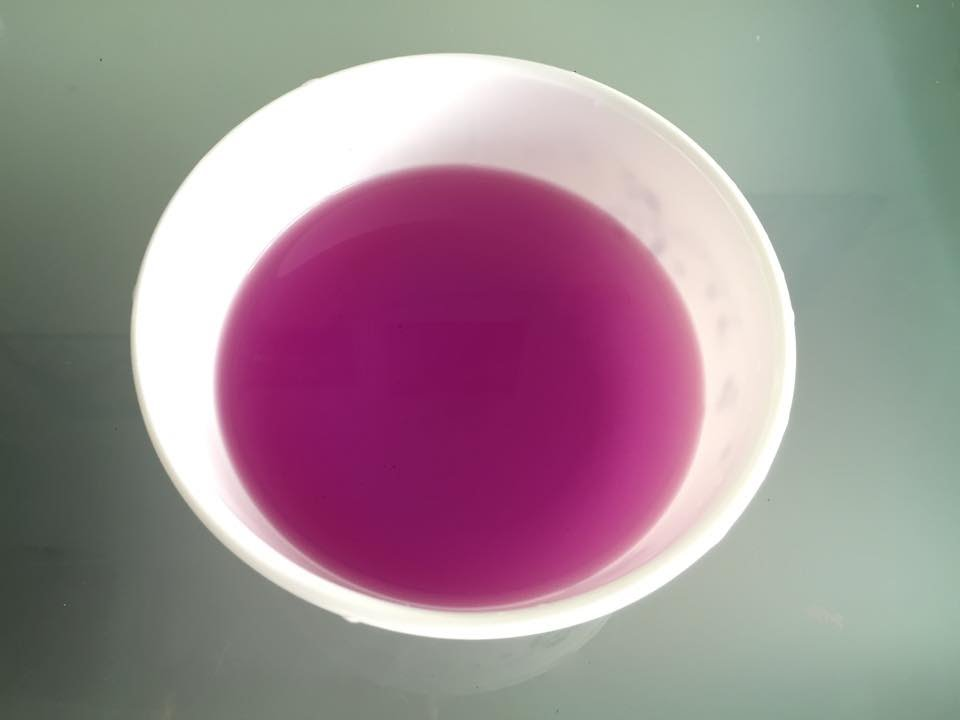 How to make a natural purple food coloring from the magenta leaves ...
