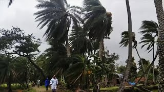 video: At least 22 killed as 'super cyclone' ravages Bangladesh and India
