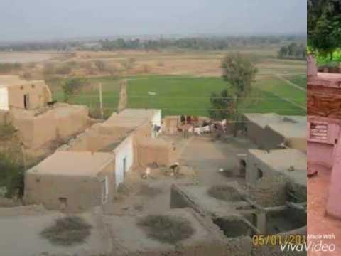 Ghayur abbas jafari  vanjali walarya