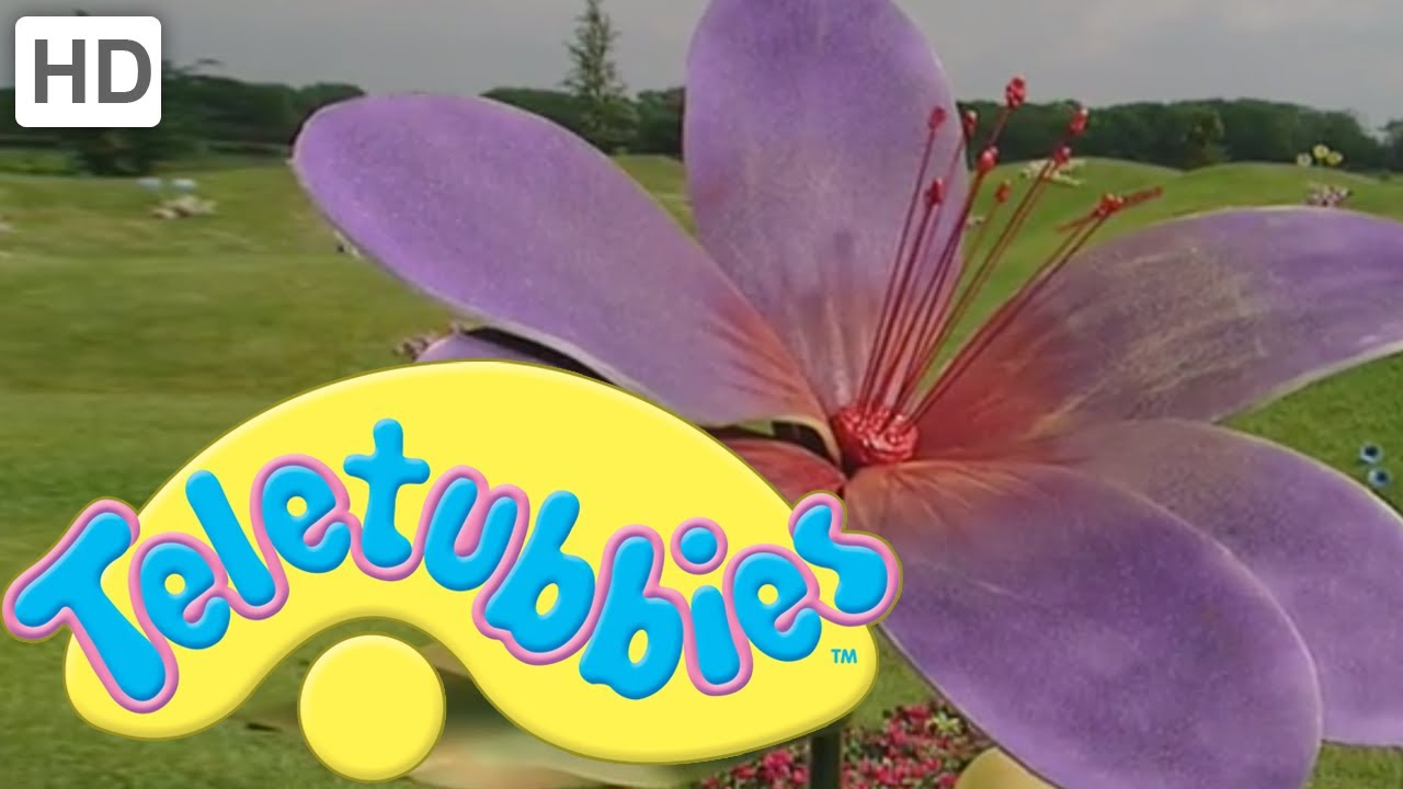 Teletubbies colours purple full episode youtube