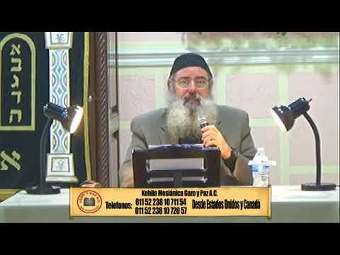 El Zinc por el Roeh Dr. Javier Palacios Celorio-  Transmision EN VIVO