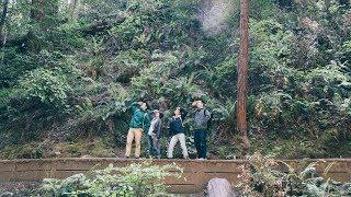 Muir Woods と Sausalito に行ってきた vlog Mp3