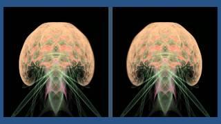 3D Apophysis Flame Anim-02D (stereoscopic)