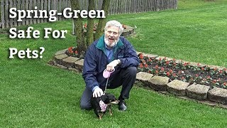 Are Spring-Green Lawn Care Applications Safe for Pets?
