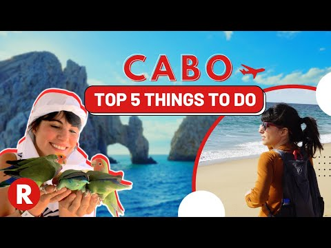 Top 5 Things To Do In Cabo // Don't Miss These Spots! // Mex