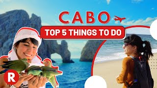 top 5 things to do in cabo dont miss these spots mexico travel tips