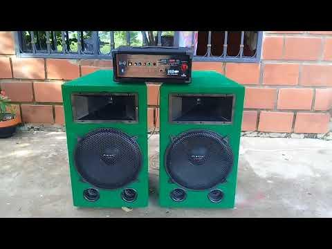 Amplificador Monofonico De 200w Casero