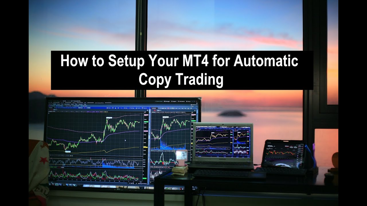 Download How to Setup your MT4/MT5 for Copy Trading -  Copy Our Trades Free