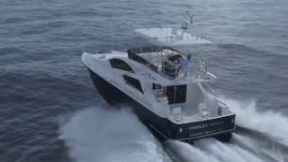 Mares Catamaran 45 Ft Yacht Fish 2