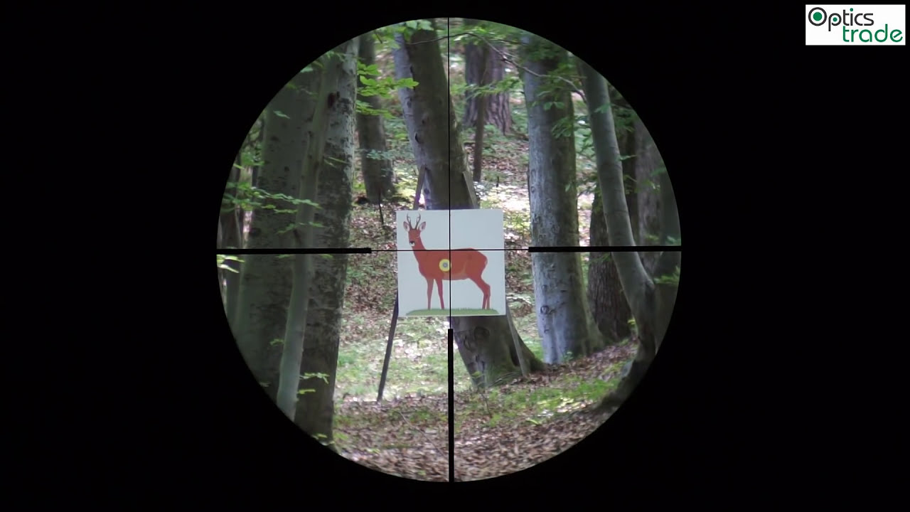 Zeiss conquest v6 2 12x50 reticle 60 subtensions youtube