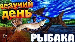 Я рыбак и это навсегда Трофейная рыбалка Рыбалка с юмором Смешные рыбаки Весёлая рыбалка 2020