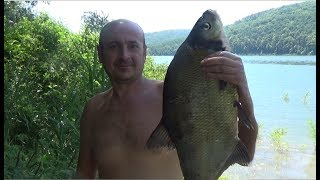 Рай на Дністрі. Рибалка і відпочинок на Дністровському водосховищі