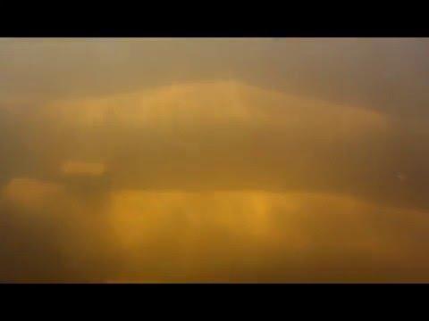 Seal River Belugas