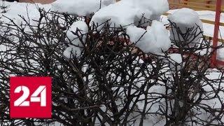На Москву идет мощный снежный циклон - Россия 24