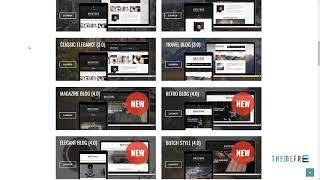 Brixton Blog - A Responsive WordPress Blog Theme Shiori Garegin