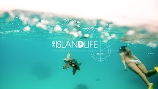THIS ISLAND LIFE Presents: The Southern Great Barrier Reef
