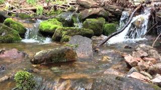 PEACEFUL Stream! GREAT SOUND! Thumbnail