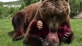 Very touching video/Топ видео/Очень трогательное видео