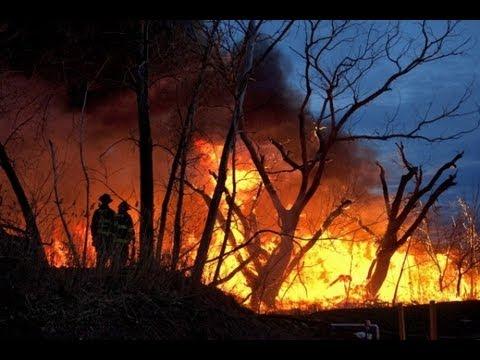 Heat Waves, Wildfires, & Global Warming