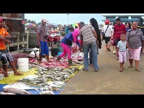 pasar-ikan-terbesar-di-papua-ikan-melimpah-ruah