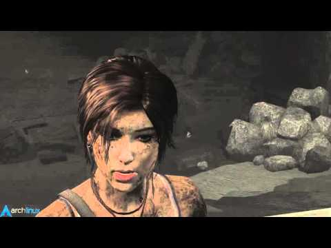 Gaming In Linux - Tomb Raider (2013)
