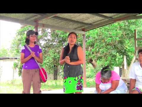 Panama Environmental Brigades - University of Southampton