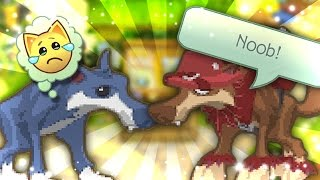 animal jam being a new jammer