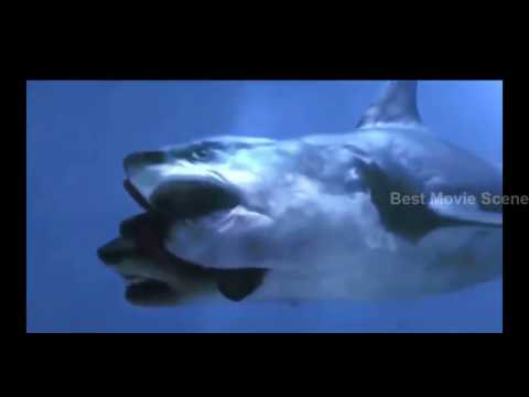 BEST MOVIE  HD 5 Headed Monster SHARK Attack
