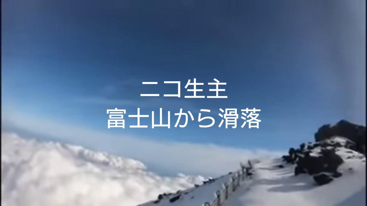 動 富士山 ニコ