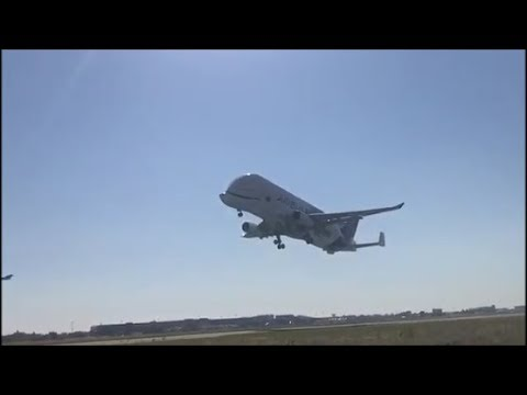 Airbus Beluga XL FIRST takeoff from Toulouse Blagnac Airport !!