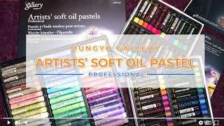 Mungyo Gallery Soft Oil Pastel Review | Professional screenshot 3
