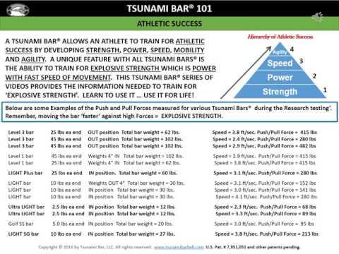 summary of tsunami