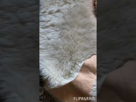 How to clean faux lamb rug