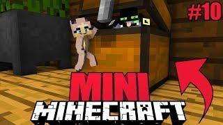 DIESEN MINI GEHEIMGANG FINDEN NUR 0,1% ✿ Minecraft [Deutsch/HD]