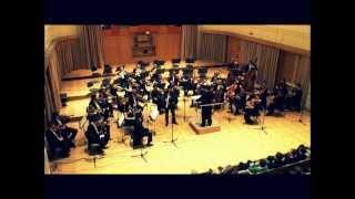 H. Villa-Lobos: Fantasia / Jan Gričar
