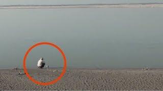 Der 16-Jährige vergräbt etwas in der Wüste. 37 Jahre später ist der Ort nicht wiederzuerkennen.