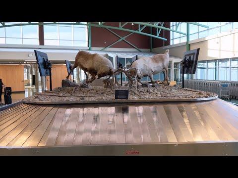 Erik Neilsen Whitehorse International Airport