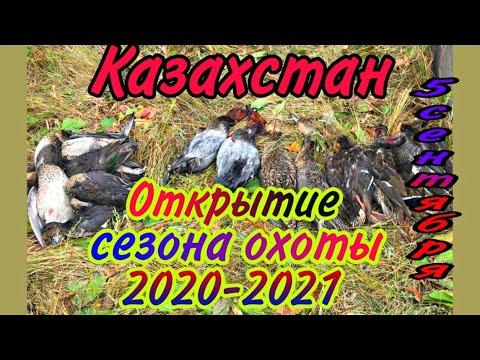 Вопрос: Когда откроется сезон охоты в Росии в 2020 году?