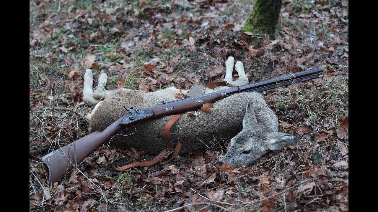 Roe Deer Hunting With Muzzleloader Rifle Youtube