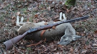 Roe deer hunting with muzzleloader rifle