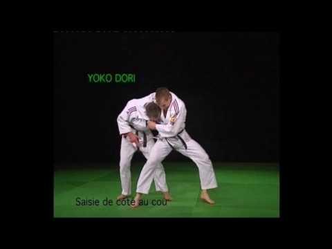 Les 12 Et 20 Techniques Imposées Jujitsu