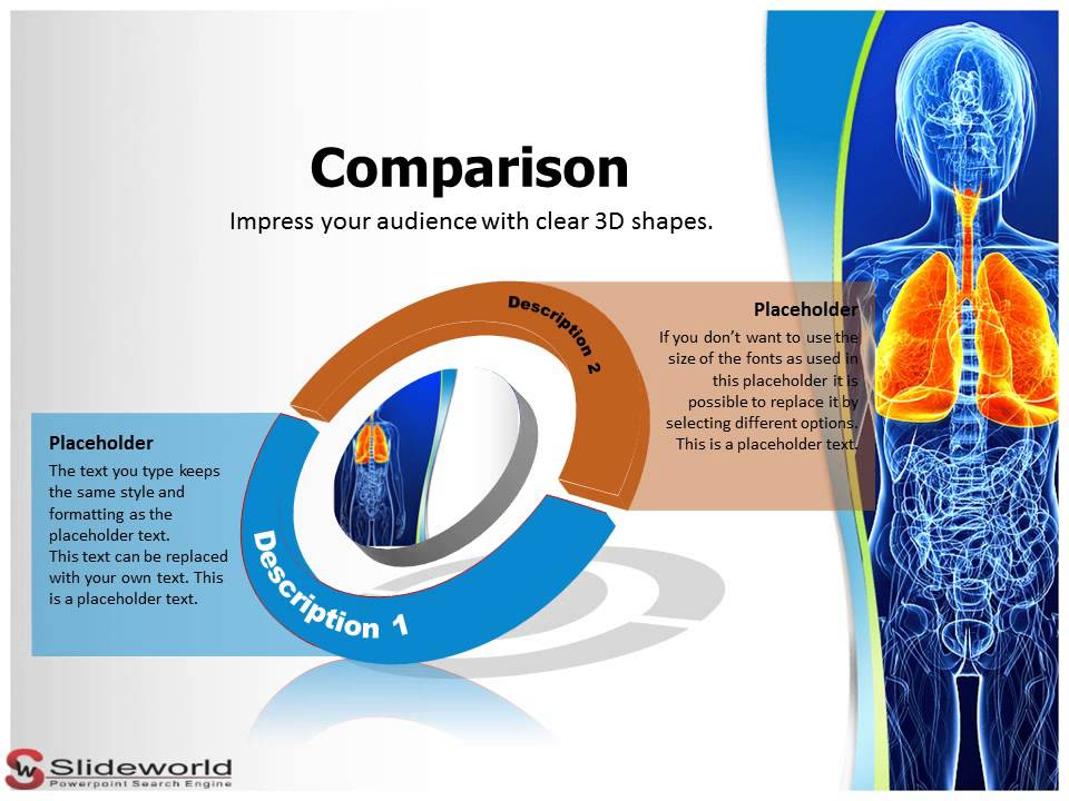 respiratory system powerpoint presentation templates